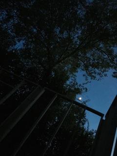 MoonOverStudio
